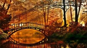 autumn bridges